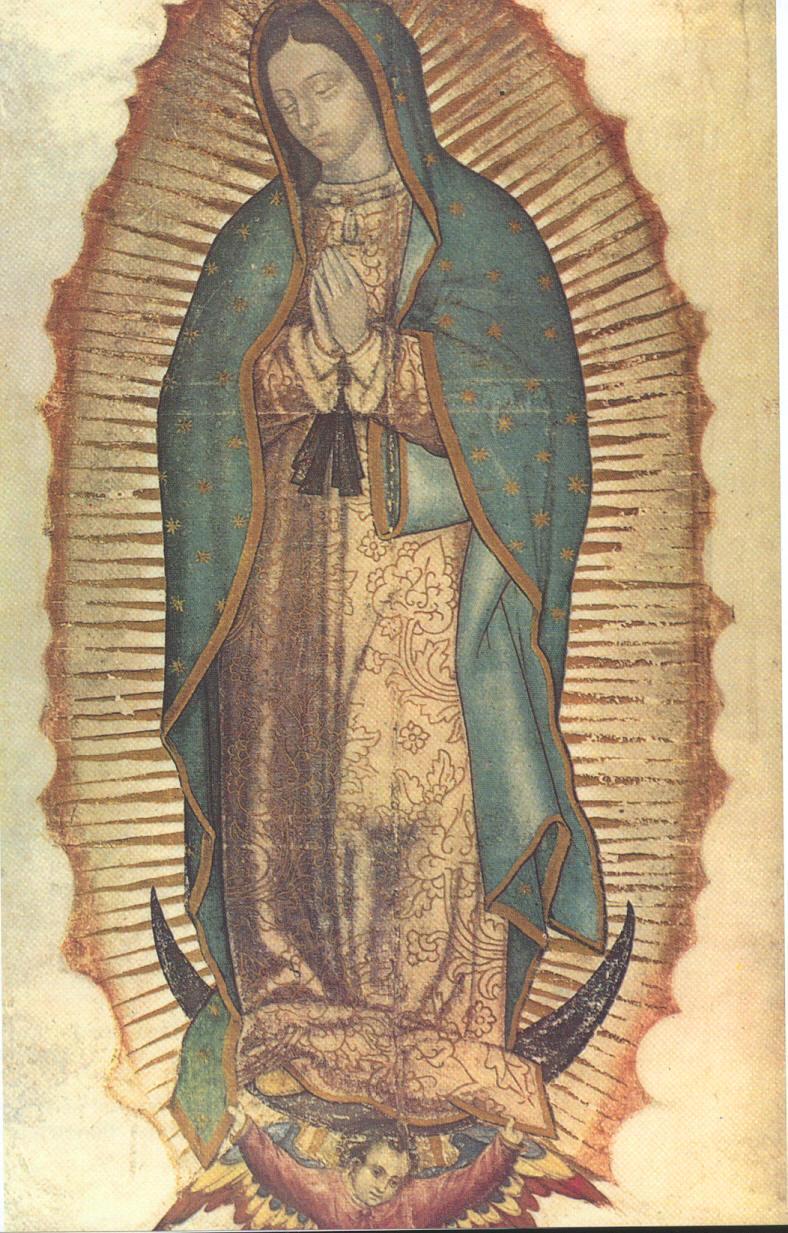 グアダルーペの聖母.jpg