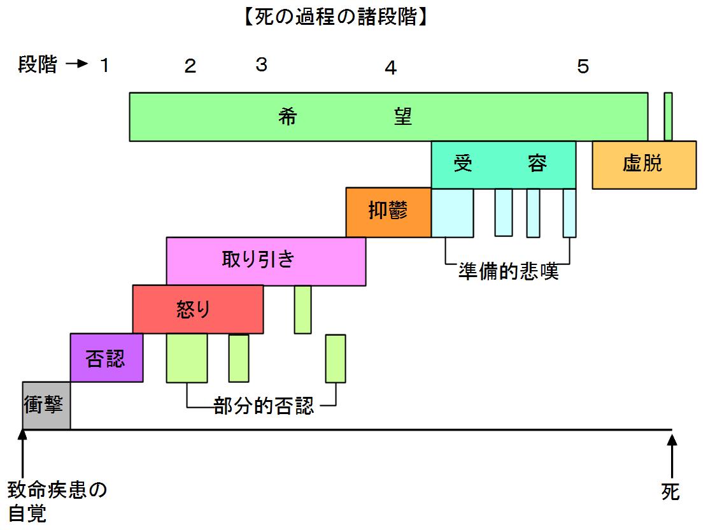 死の過程の諸段階2015年6月1日.png